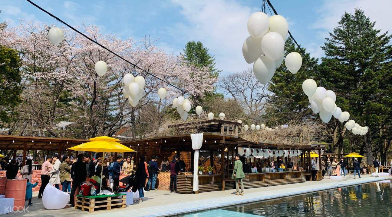 an event area with cherry blossom trees in Nami Island
